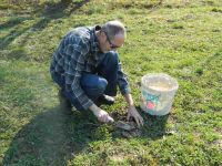 Samen erfolgreich keimen lassen - Die beste Methode Samen, Maulwurferde suchen