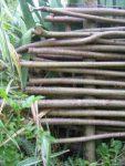 Kostenlos Garten gestalten DIY Flechten - Der einfache Weg die Flechtenden