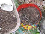 Garten gestalten und viel Geld sparen. Grobes dann Feines