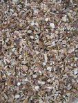 Steinpilze getrocknet Granulat nach dem Mahlen