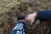 Wärme aus Biomasse - Sparen beim Heizen - Anleitung zum Eigenbau (Teil 2/4) Dampf aus BM
