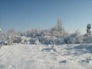 Wintereindrücke Permakultur Garten im Schnee, alles friedlich im Schnee