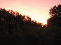 Märchen Dornröschen die Sonne geht unter in der Lichtung