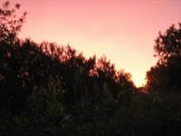 Märchen Dornröschen der Himmel faerbt sich rot
