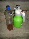 fertiger Ackerschachtelhalm-Tee als biologisches Spritzmittel bei Quitte als Baumpatenschaft