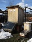 2 Solartrockner trocknen die die Quitten fuer die Quitten Essenz