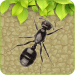 Free Download Ant Smasher- 2018 1.0 APK, APK MOD, Ant Smasher- 2018 Cheat