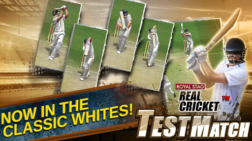 Real Cricket Test Match cheathackgameplayapk modresources generator 3