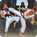 Free Download Real Karate Fighting 2019: Kung Fu Master Training APK, APK MOD, Cheat