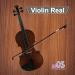 Free Download Violin Real 1.1 APK MOD, Violin Real Cheat
