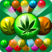 Free Download Weed Bubble Shooter Match 3 Games 3.2 MOD APK, Weed Bubble Shooter Match 3 Games Cheat