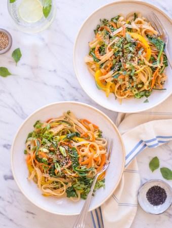 Asiatische Sesam-Nudeln – rein pflanzlich, vegan, glutenfrei, ohne raffinierten Zucker - de.heavenlynnhealthy.com