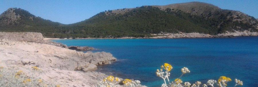 Mallorca Sweet Homes