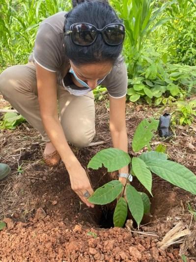Morija Agroforstwirtschaft 4