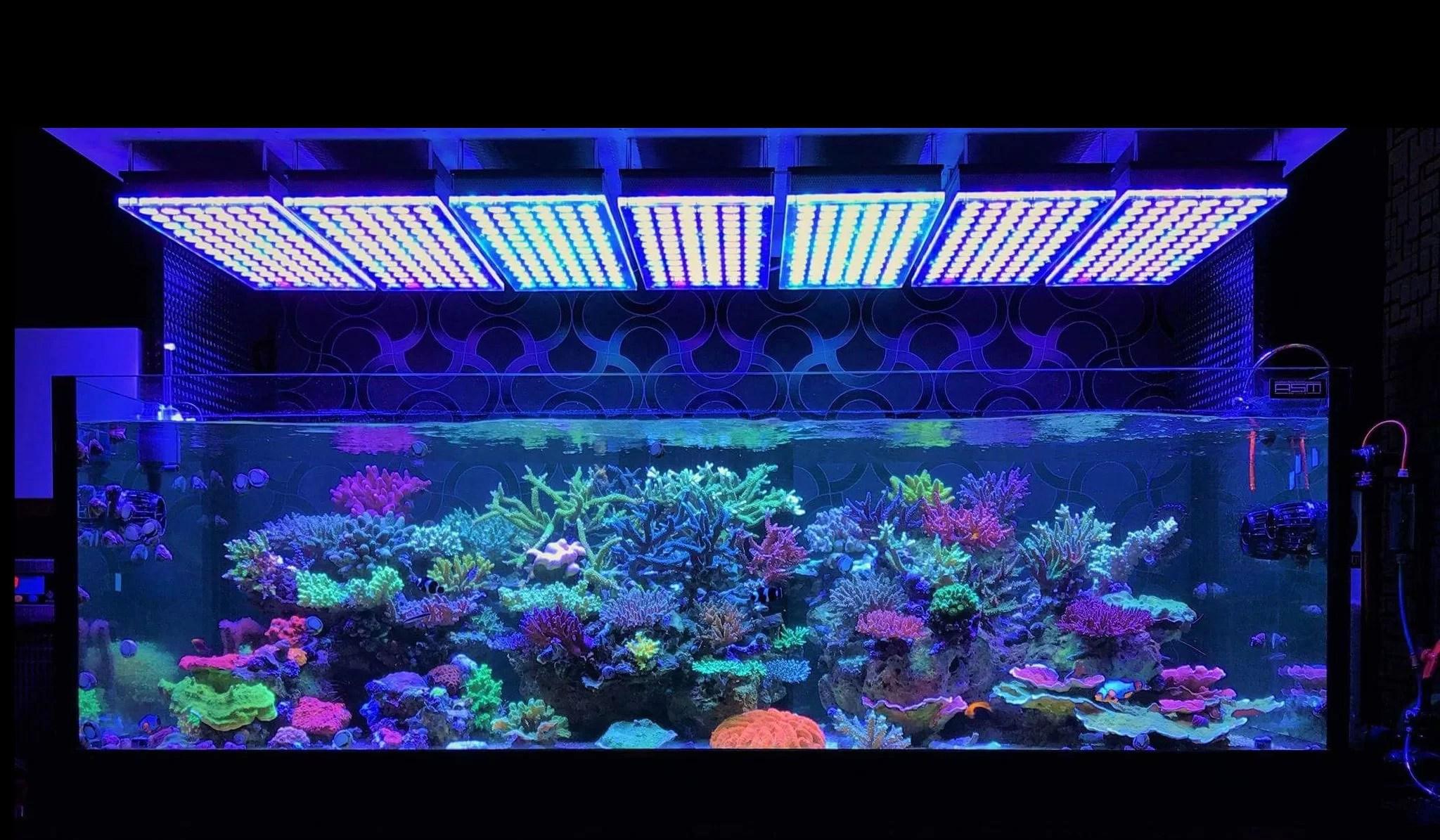 Atlantik V4 Reef Aquarium Led Beleuchtung Orphek