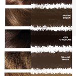 Shades Loreal Burgundy Hair Color Chart Novocom Top