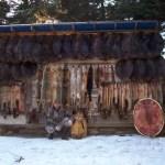 Wall of Fur, 2006