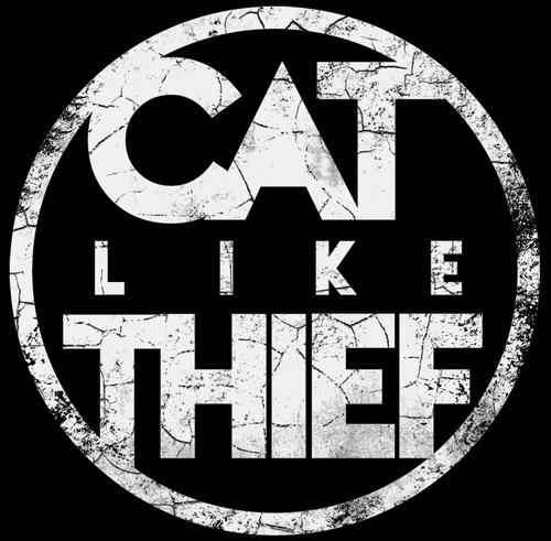 cat like thief