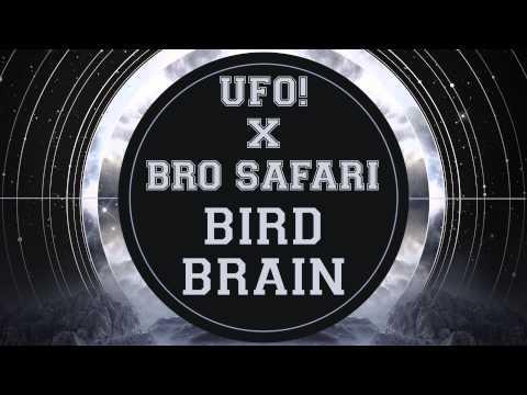 bro safari & ufo! 3