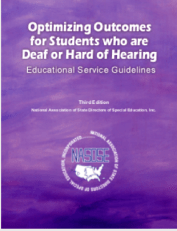 Cover of Guidelines book, with purple background and white letters.