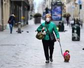 Perros detectan COVID-19 con el olfato