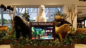 Orbi Yokohama(オービィ横浜)