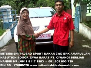PAJERO SPORT DAKAR 2WD AT PAK H. DRS AMARULLAH NASUTION 1