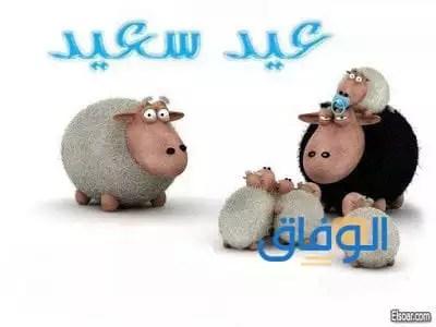 صور مضحكة عن عيد الاضحى