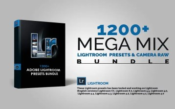 4 in 1 Photo Action And Light Room Bundle