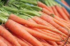 Photograph of carrots