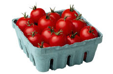 Photograph of a carton of cherry tomatoes