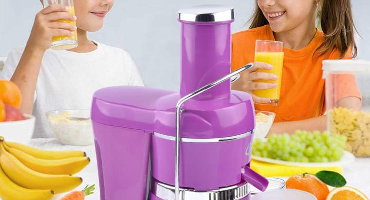 Commercial slow fruit orange centrifugal juicer