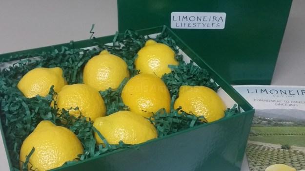 Limoniera Lemons