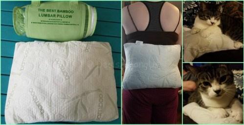 The Best Bamboo Lumbar Pillow