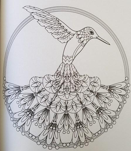 bird-mandalas-4