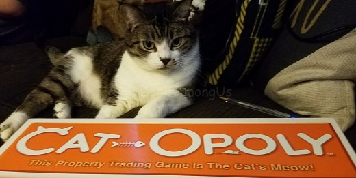 cat-opoly-and-maggee