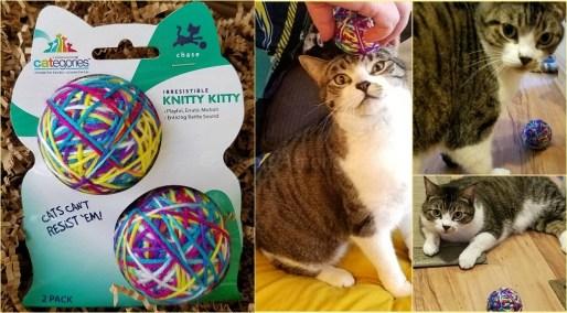 cat-yarn-ball-maggee-v-ball