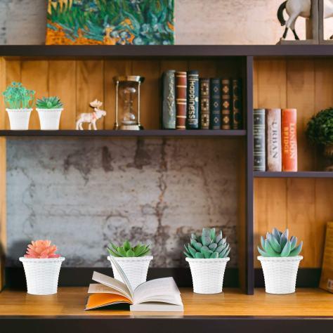 Artificial Succulent Plants 3