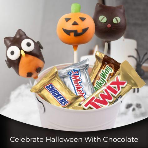 Halloween Candy Minis Size Variety Mix 3.jpg