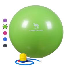 Thick Exercise Ball with Quick Pump 2