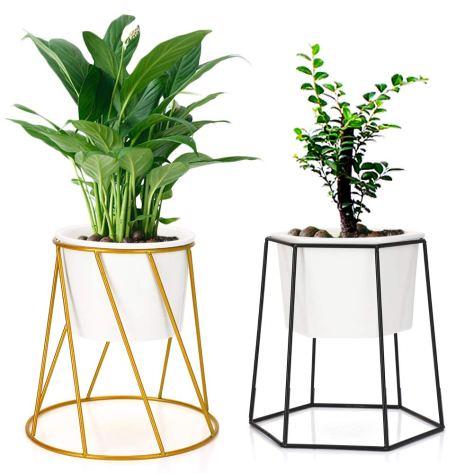 Planter-pots-indoor.jpg