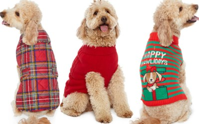 St. Johns Bark Dog Clothes From Just $6.74 at JCPenney (Regularly $22)