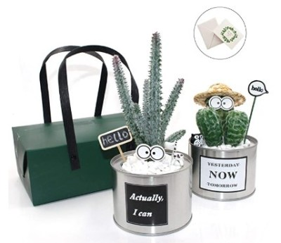 AMAZON: YOCEAN Mini Artificial Plants, 2 Pack – 70% OFF!