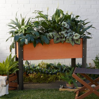WALMART: Coral Coast Bloomfield Wood Raised Garden Bed For $129.99 (Was $200) + Free Shipping