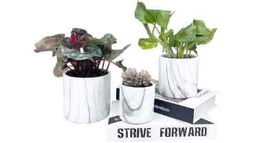 Amazon: 3pk Marble Plants Pots for Live Plants Indoor $13.5 (Reg. $27)