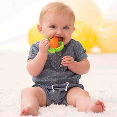 Amazon: Infantino Good Bites Textured Carrot Teether, Just $4.99