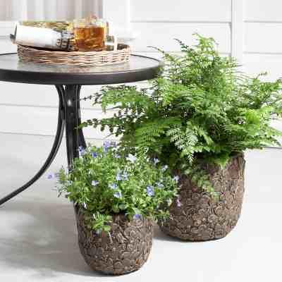 Walmart: Mainstays Layered Flower Clay Planter, Set of 2 ONLY $34.99 (Reg $43)