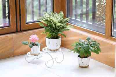Amazon: 7 & 5.5 Inch Ceramic Planters (Set Of 2) Just $16.99 (Reg $34) + FREE Shipping