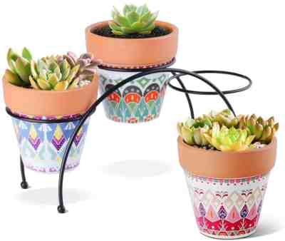 Amazon: 3.5 Inch Terracotta Clay Pots Pack of 3 with Metal Stand for $10.79 (Reg. Price $17.99) after code!