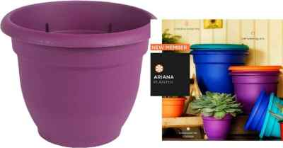 Amazon: Bloem AP0629 Ariana Self Watering Planter, 6″ For $2.94 (Reg $5)
